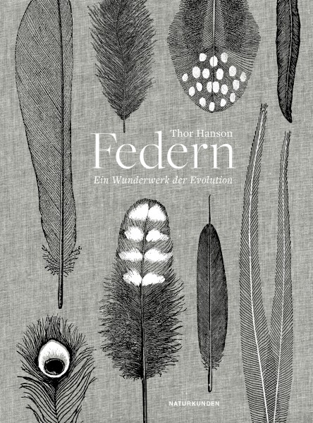 Federn, Hanson